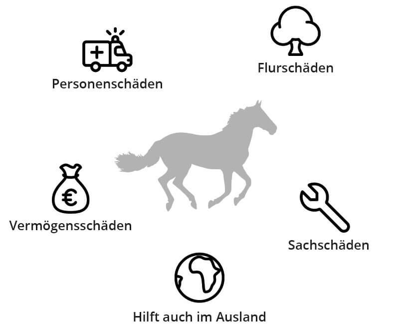 Schadenbeispiele Pferdehaftpflicht